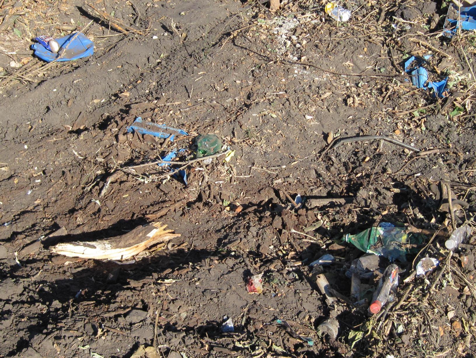 Factcheck: 'Bedrijfsvoering Brabantse boeren schadelijker voor milieu dan drugsdumpingen'