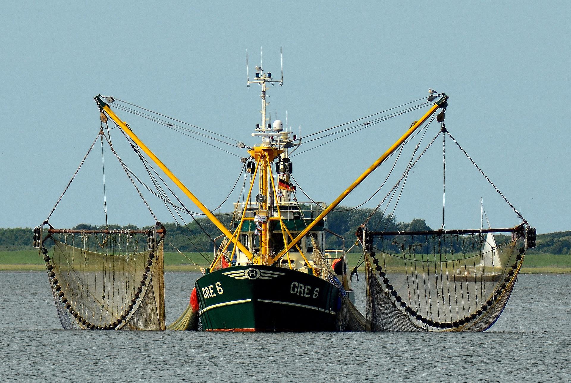 Factcheck: 'Bijna 40 procent van de Nederlandse vissersvloot gebruikt pulstechniek'