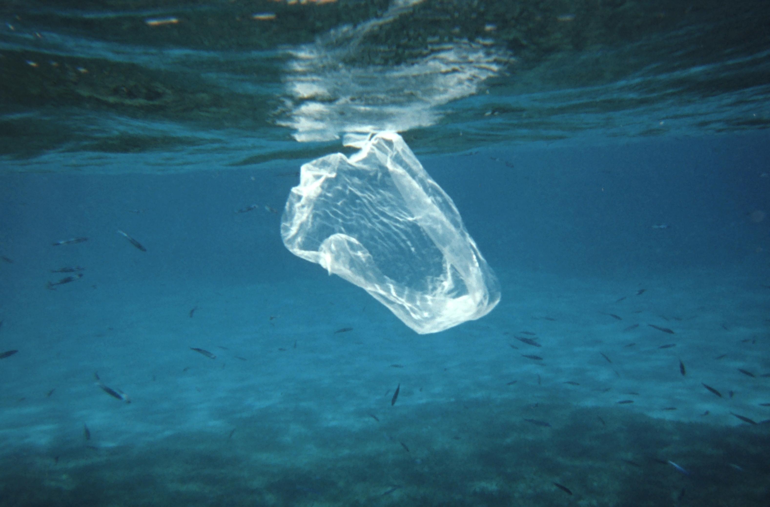 Factcheck: 'Iedere minuut belandt er een vrachtwagenlading plastic in zee'