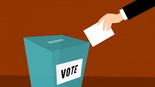 'Opkomst nationale verkiezingen in Europa tussen 70 en 80 procent'